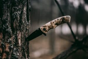 Hunting knife in a tree